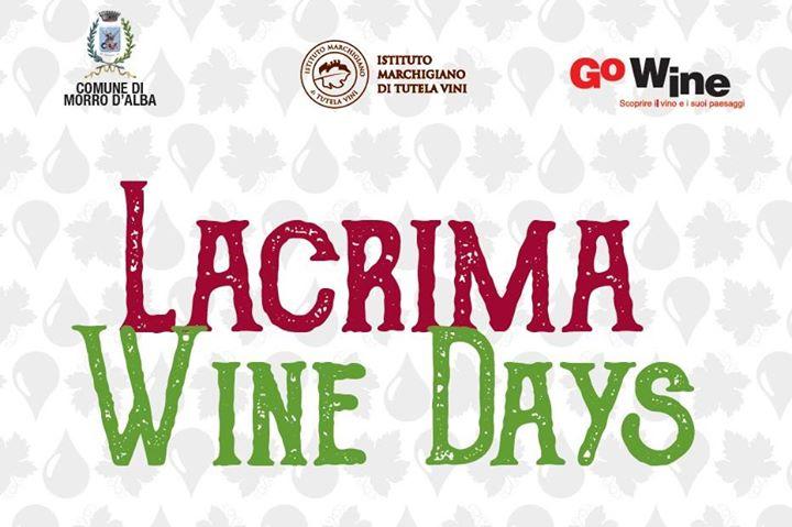 Lacrima Wine Days Marotti Campi