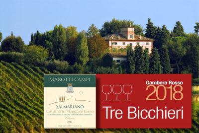 Marotti Campi Castelli di Jesi Verdicchio Riserva Salmariano 2014 Tre Bicchieri Gambero Rosso 2018