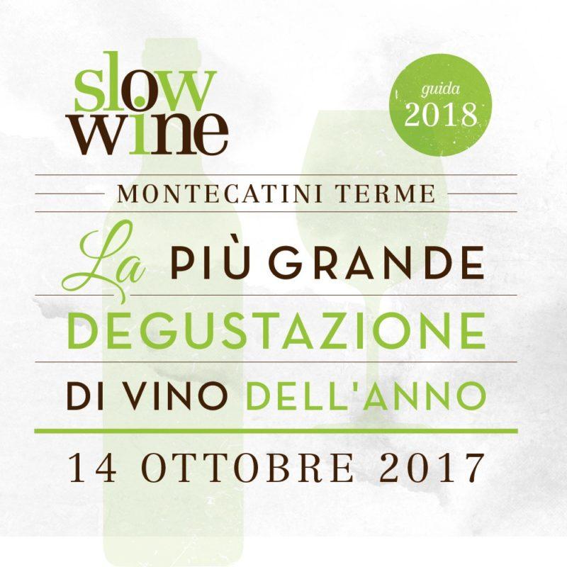 SLOW WINE MONTECATINI MAROTTI CAMPI