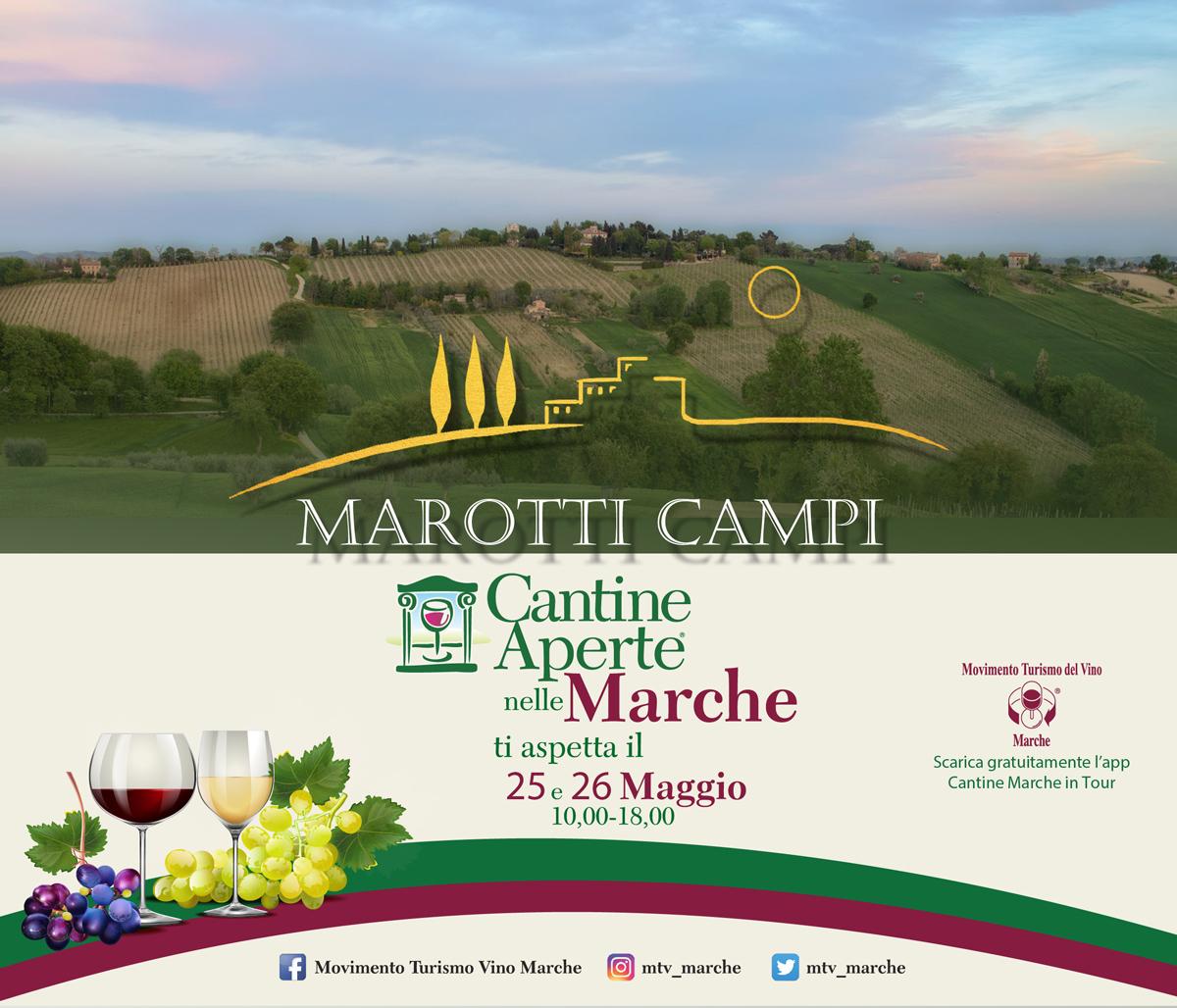 _cantine-aperte-2020-Marotti-Campi-Lacrima-e-Verdicchio