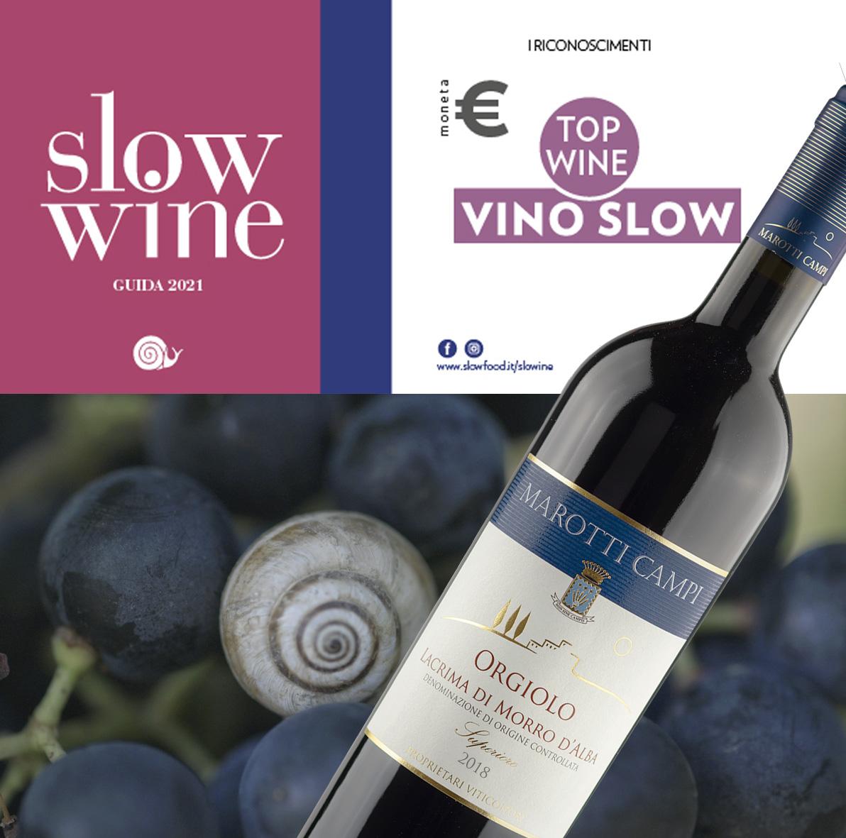 Slow Wine Guide 2021 Orgiolo Lacrima di Morro d'Alba DOC Superiore 18 Vino Slow